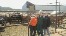 Luna Cattle Work 6-2014